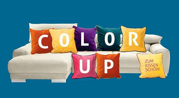 Ewald Schillig Color UP